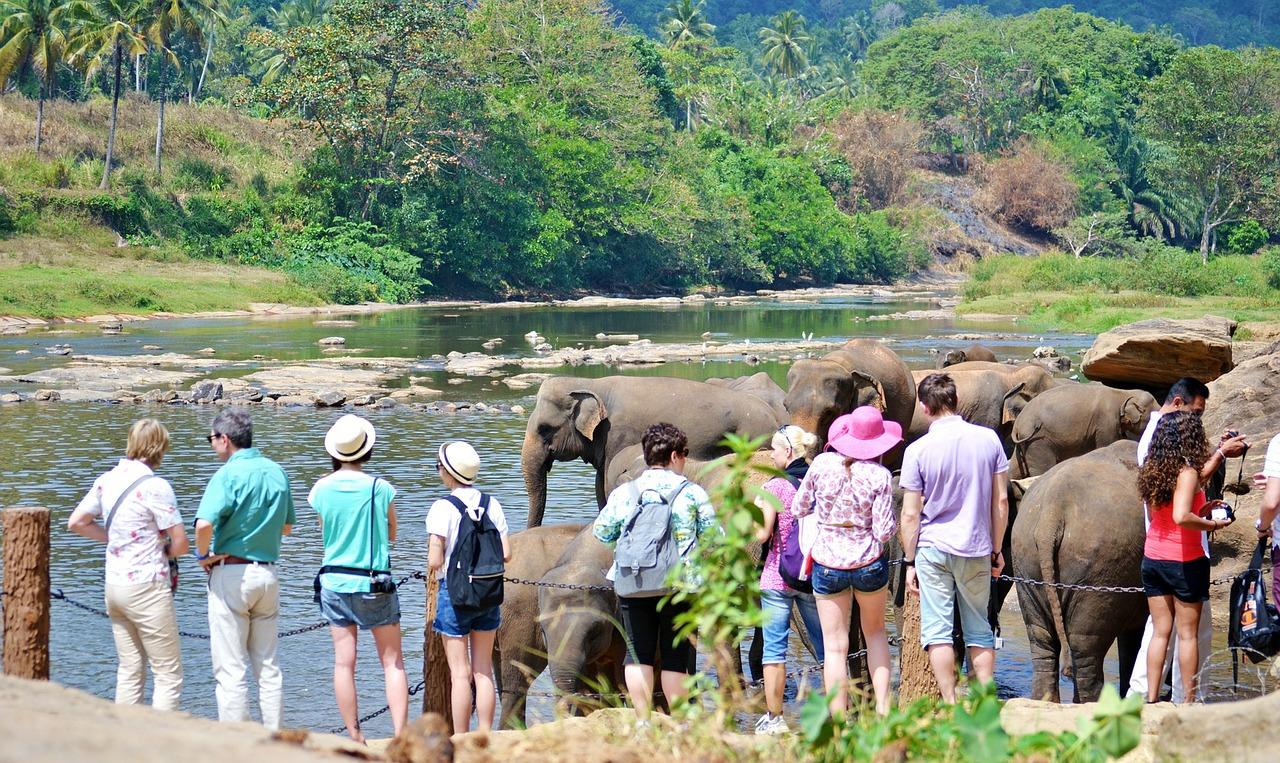 Экзотический отдых в Шри-Ланке и Индонезии