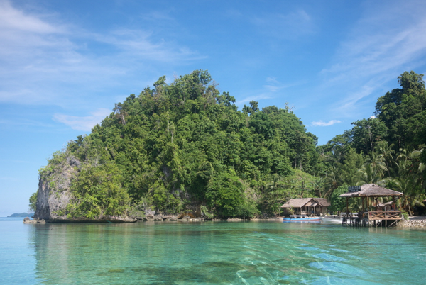 Большие Зондские острова Сулавеси