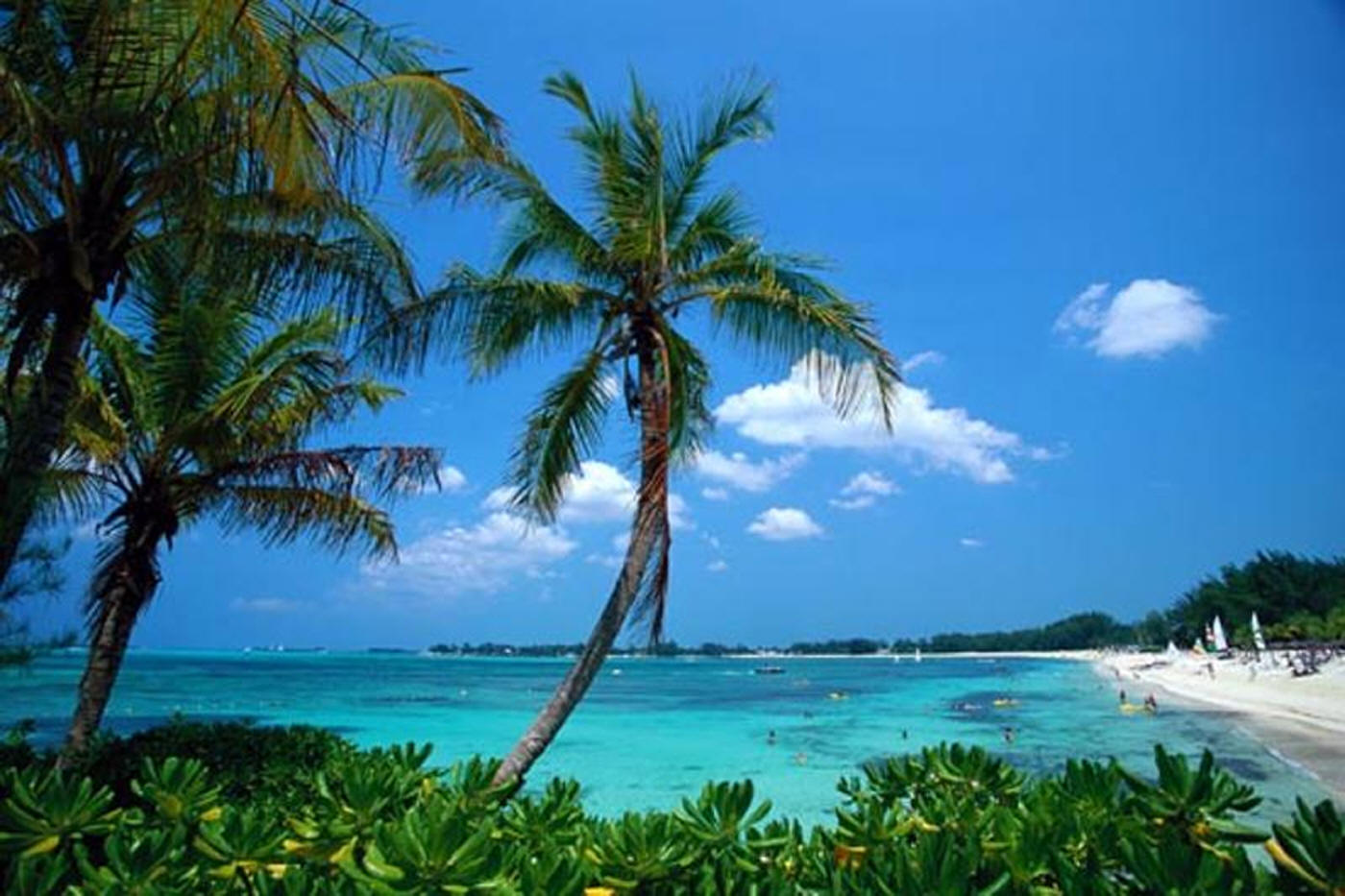 Истекает срок загранпаспорта Багамы