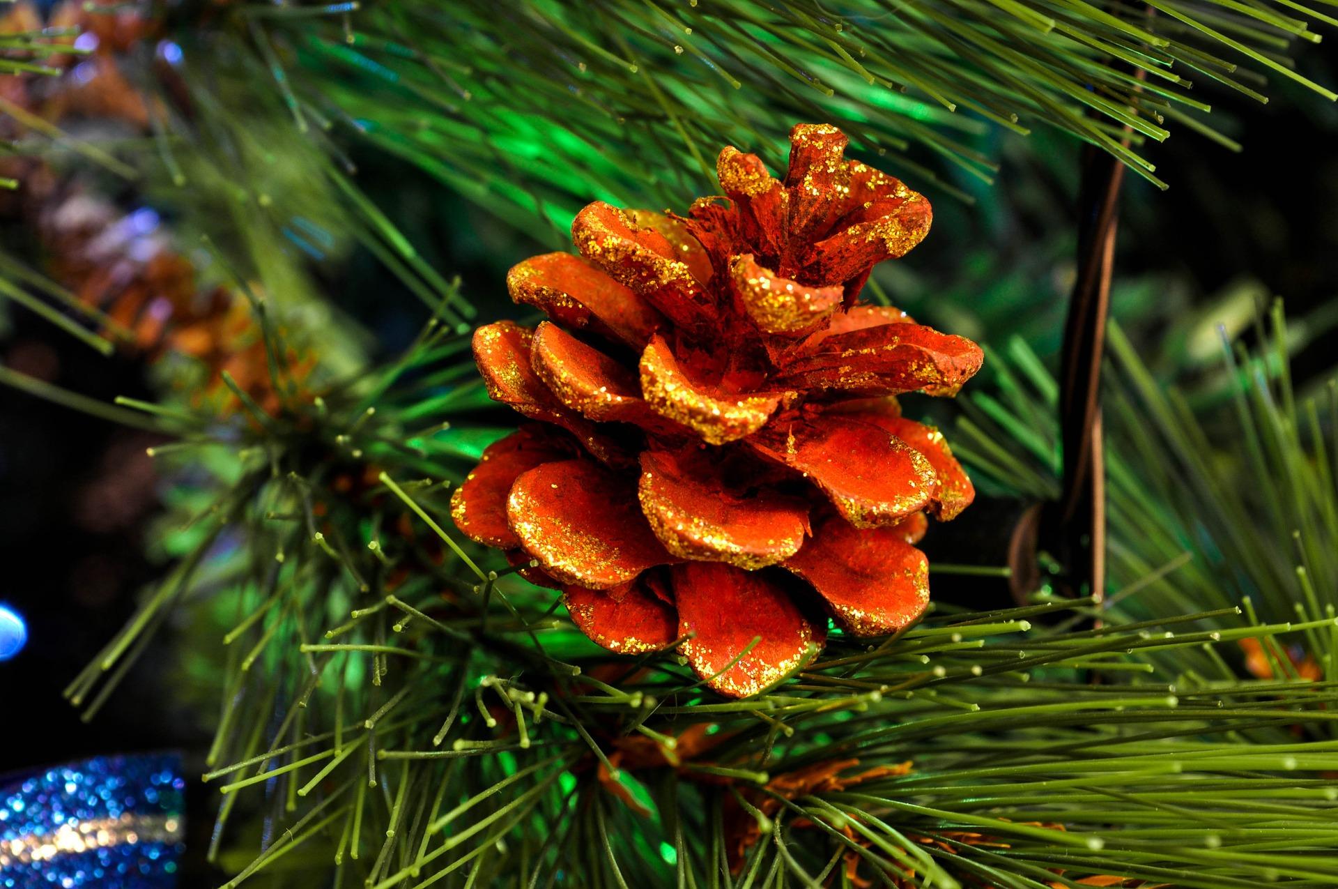 christmas-tree-1071937_1920